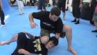 Ground fighting - Luke Holloway